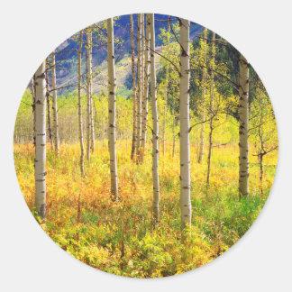 ロッキー山脈の秋の《植物》アスペンの木 ラウンドシール