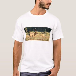 ロッキー山脈公園のBullのオオシカ Tシャツ