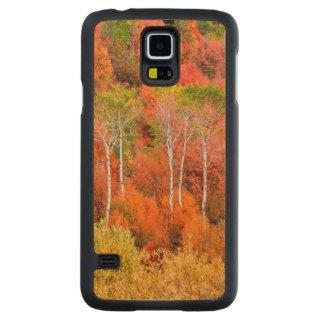 ロッキー山脈、ワイオミング、米国の秋色 CarvedメープルGalaxy S5スリムケース