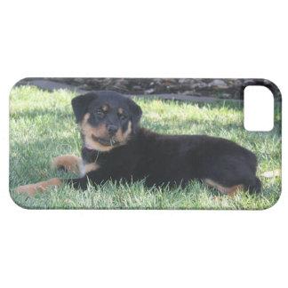 ロットワイラーの子犬の電話箱 iPhone SE/5/5s ケース