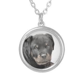 ロットワイラーの子犬 シルバープレートネックレス