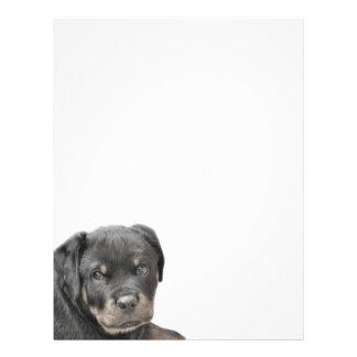 ロットワイラーの子犬 レターヘッド
