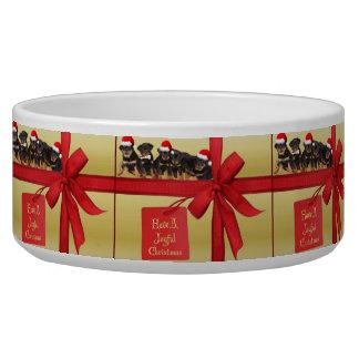 ロットワイラーの願い嬉しいクリスマス
