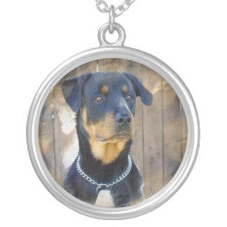 ロットワイラー犬のネックレス シルバープレートネックレス