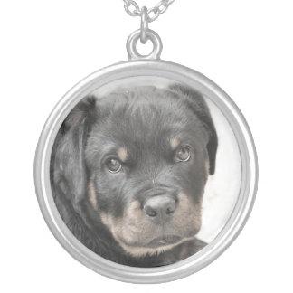 ロットワイラー犬 シルバープレートネックレス