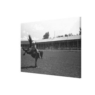 ロデオのカウボーイの乗馬馬、(B&W) キャンバスプリント