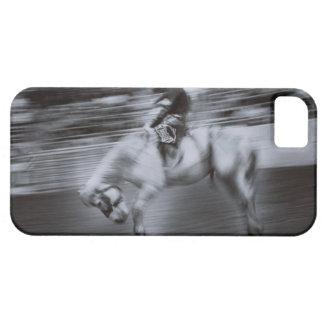 ロデオの馬のカウボーイ iPhone SE/5/5s ケース