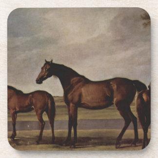 ロバおよび子馬は現われる嵐の前に心配します コースター