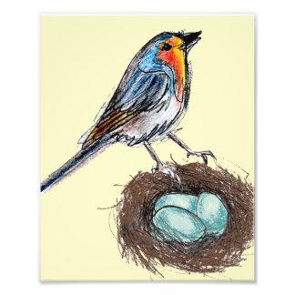 ロビンの卵の巣のプリントの芸術のロビンの鳥8x10 フォトプリント