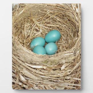 ロビンの鳥の卵の巣 フォトプラーク