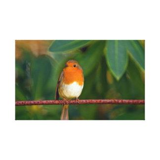 ロビンの鳥 キャンバスプリント