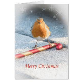 ロビン及びクリスマスキャンデーの菓子が付いているクリスマスカード グリーティングカード