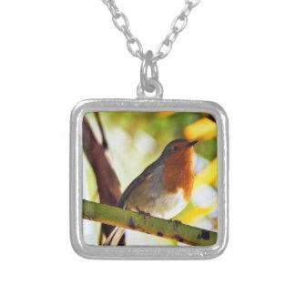 ロビン赤い胸の鳥 シルバープレートネックレス