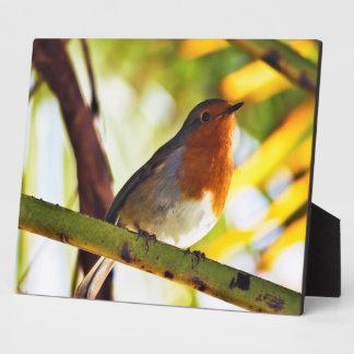 ロビン赤い胸の鳥 フォトプラーク