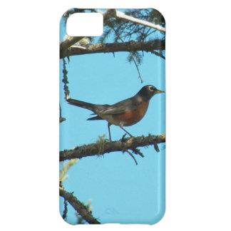 ロビン iPhone5Cケース