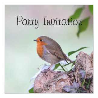 ロビンRedbreastのパーティの招待状 13.3 スクエアインビテーションカード