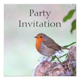 ロビンRedbreastの招待状 カード