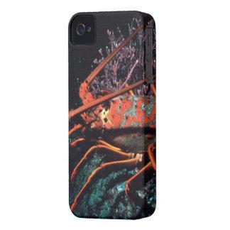 ロブスターの這うこと Case-Mate iPhone 4 ケース