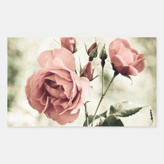 ロマンスのヴィンテージのピンクのバラのステッカー 長方形シール
