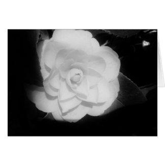 ロマンスの開花 カード