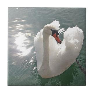 ロマンチックで白い白鳥 タイル