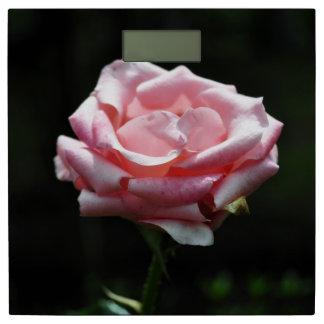 ロマンチックなばら色の花#10 体重計