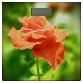 ロマンチックなばら色の花#4 体重計