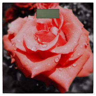 ロマンチックなばら色の花#6 体重計
