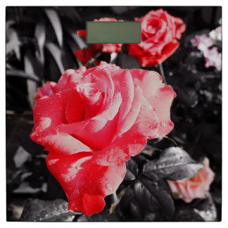 ロマンチックなばら色の花#8 体重計