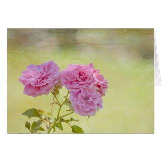 ロマンチックな庭のバラ カード