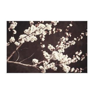 ロマンチックな気分-柔らかい調子、桜 キャンバスプリント