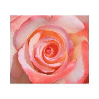 ロマンチックな赤と白バラのキャンバスのプリント キャンバスプリント