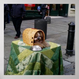 ロンドンイギリスのプリントポスターの犬の用品類の人 ポスター