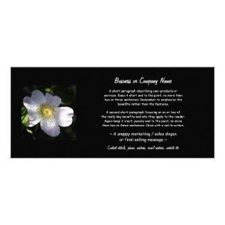 ローザCanina -犬バラ ラックカード
