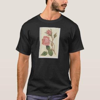 ローザCenifolia Muscosa Tシャツ
