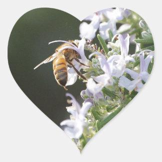 ローズマリーの植物の蜂 ハートシール
