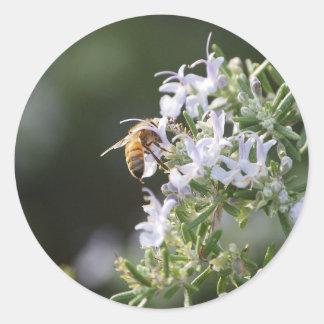 ローズマリーの植物の蜂 ラウンドシール