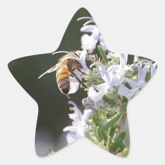 ローズマリーの植物の蜂 星シール