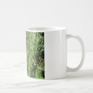 ローズマリーの植物 コーヒーマグカップ