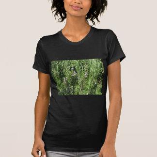 ローズマリーの植物 Tシャツ