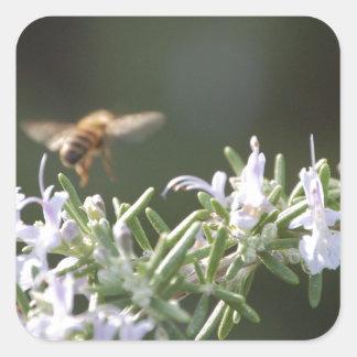 ローズマリーの蜂 スクエアシール