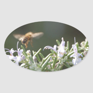 ローズマリーの蜂 楕円形シール
