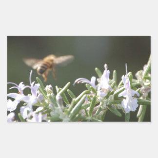 ローズマリーの蜂 長方形シール