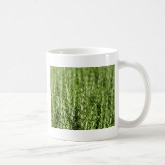 ローズマリー(Rosmarinusのofficinalis)の枝 コーヒーマグカップ