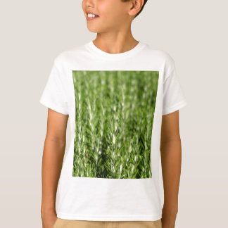 ローズマリー(Rosmarinusのofficinalis)の枝 Tシャツ