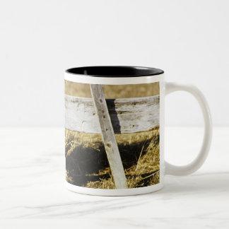ロードアイランド赤のオンドリ ツートーンマグカップ