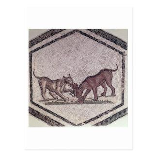 ローマ鳥のために第2第3世紀戦っている犬( ポストカード