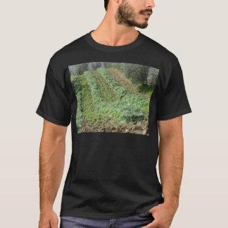 ローリング・ヒルズのアーティチョークのプランテーション Tシャツ