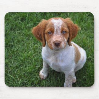 ローンのブリッタニーの子犬のマウスパッド マウスパッド
