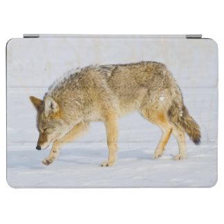 ワイオミングのイエローストーン国立公園、コヨーテ iPad AIR カバー